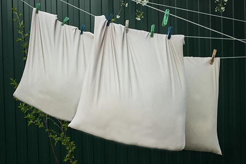 Pillow drying on the clothesline
